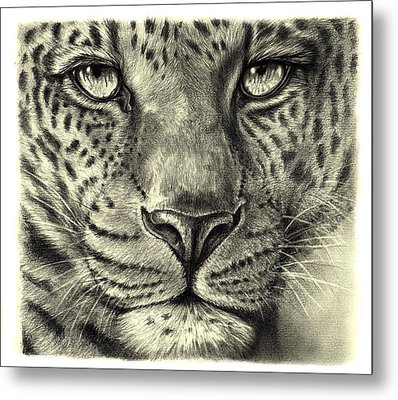 Metal Print featuring the drawing Leopard by Heidi Kriel