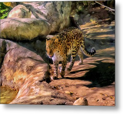 Leopard Metal Print by Michael Pickett