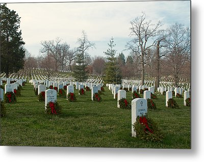 Lest We Forget Metal Print by Sandy Molinaro