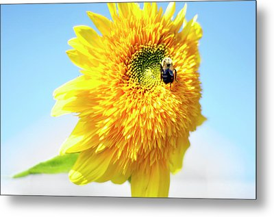 Let It Bee Metal Print