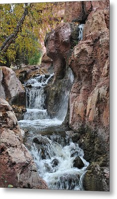 Metal Print featuring the photograph Let It Fall by Amanda Eberly-Kudamik