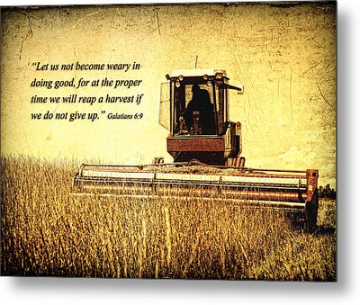 Let Us Not Become Weary Metal Print by Lincoln Rogers
