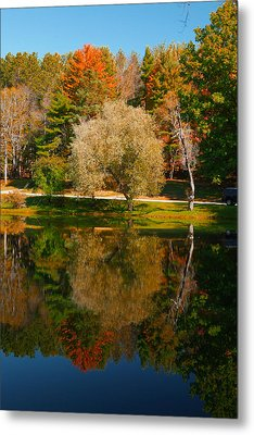 Letchworth Autumn Reflections Metal Print