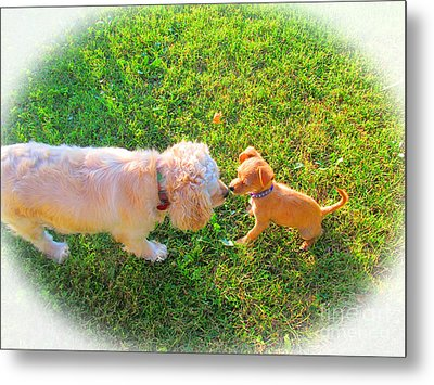 Let's Be Friends Metal Print by Tina M Wenger