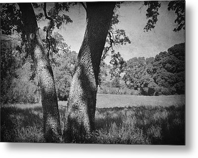 Let's Lay Here Forever Metal Print