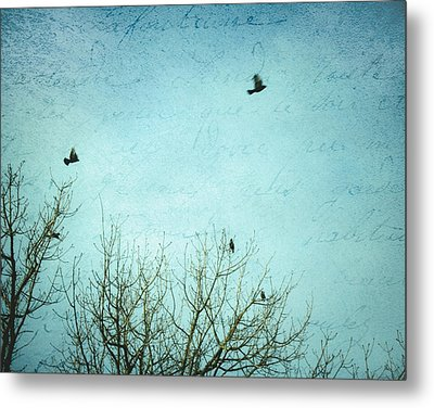 Metal Print featuring the photograph Letters Of Flight by Lisa Parrish