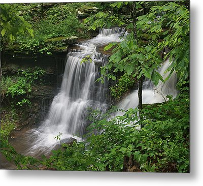 Lichen Falls Ozark National Forest Metal Print