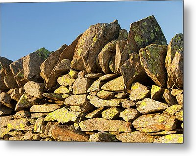 Lichen On A Dry Stone Wall Metal Print