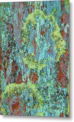 Metal Print featuring the photograph Lichen On Fence by Michele Penner