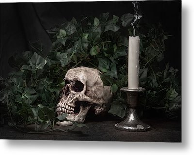 Life And Death Metal Print by Tom Mc Nemar