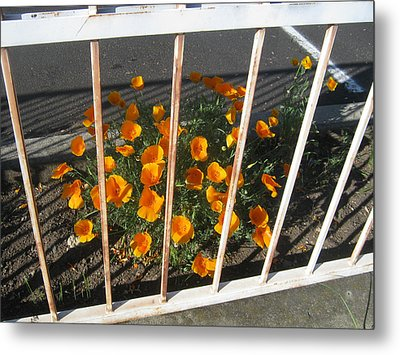 Metal Print featuring the photograph Life Behind Bars by Marie Neder