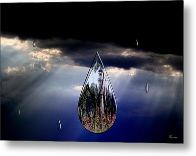 Life Drop Metal Print by Andrea Lawrence