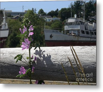 Metal Print featuring the photograph Life In The Boatyard by Laura  Wong-Rose