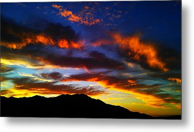 Life In The Desert Metal Print by Chris Tarpening