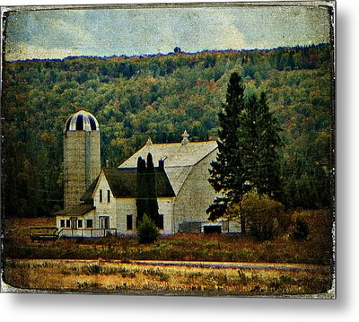 Life On A Farm  Metal Print by Dianne  Lacourciere