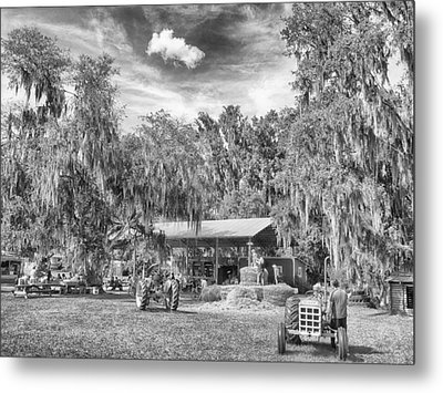 Metal Print featuring the photograph Life On The Farm by Howard Salmon