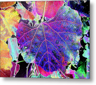 Life's Vein Metal Print by Kenneth James