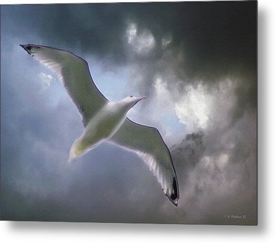 Lift - Oil Paint Effect Metal Print by Brian Wallace