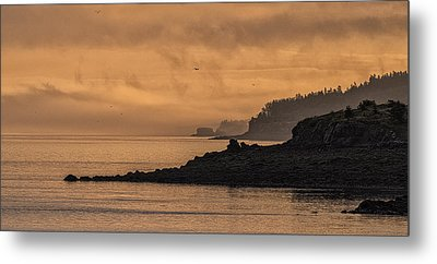 Metal Print featuring the photograph Lifting Fog At Sunrise On Campobello Coastline by Marty Saccone