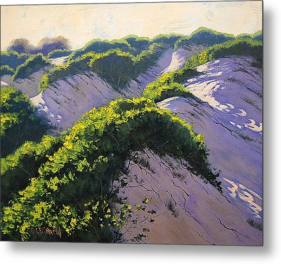 Light Across The Dunes Metal Print by Graham Gercken