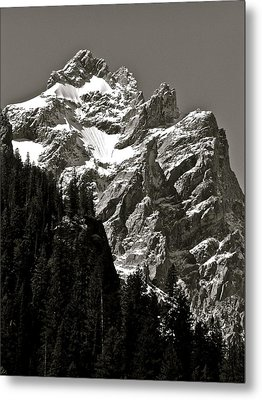 Light Dusting Metal Print by Gael Graysen
