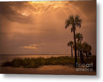 Light From Above Metal Print by Marvin Spates