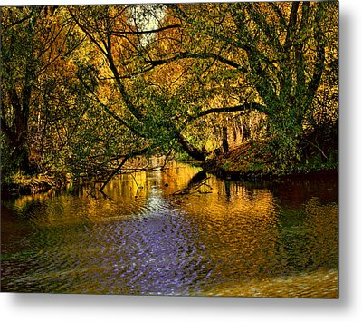 Light In The Trees Metal Print