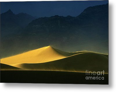 Light Is Everything Metal Print by Bob Christopher