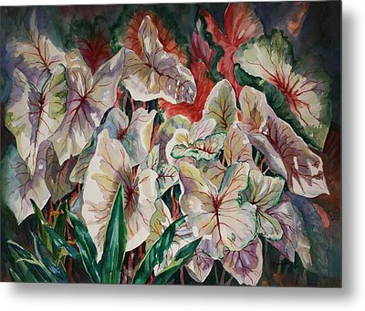 Metal Print featuring the painting Light Play Caladiums by Roxanne Tobaison