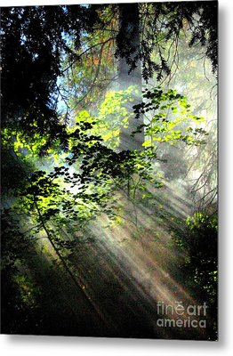 Light Rays Metal Print by Shasta Eone