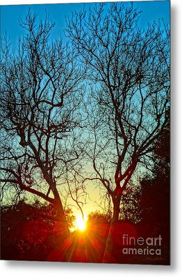 Light Sanctuary Metal Print by Gem S Visionary