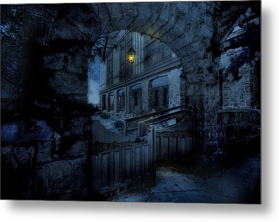 Light The Way Metal Print by Shelley Neff