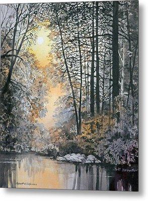Light Through The Woods Metal Print
