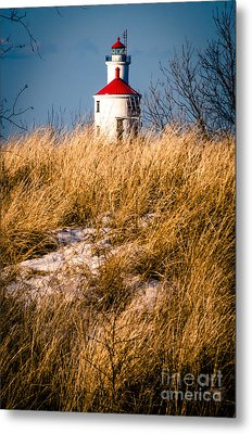 Metal Print featuring the photograph Lighthouse Amongst The Tall Grass by Mark David Zahn