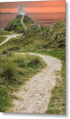 Lighthouse Trail Metal Print by Adrian Evans