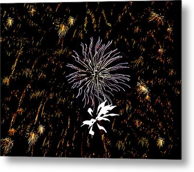 Lighting Up The Sky Metal Print by Aimee L Maher Photography and Art Visit ALMGallerydotcom