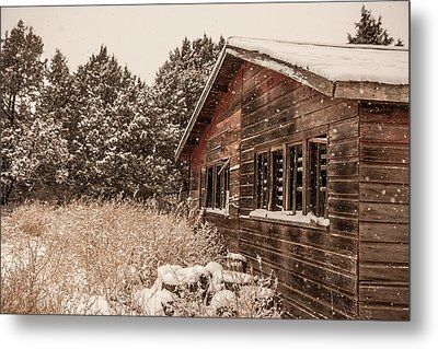 Metal Print featuring the photograph Snowing Softly by Shirley Heier