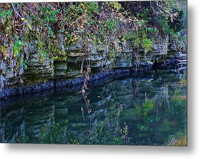 Like Looking Into A Mirror Metal Print by Bruce Bley