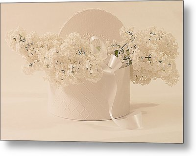 Lilac Purity In A Box Metal Print by Sandra Foster
