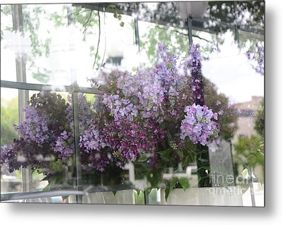 Lilacs Hanging Basket Window Reflection - Dreamy Lilacs Floral Art Metal Print by Kathy Fornal