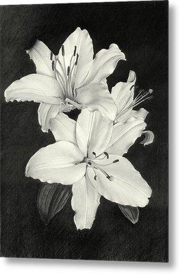 Lilies Metal Print by Nicola Butt