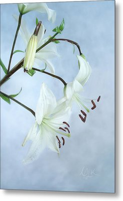 Metal Print featuring the photograph Lilies On Blue by Louise Kumpf