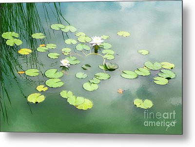 Metal Print featuring the photograph Lilly Pads by Erika Weber