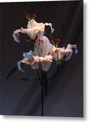 Metal Print featuring the photograph Lilly Variation #02 by Richard Wiggins
