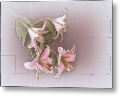 Lily Metal Print by Elaine Teague