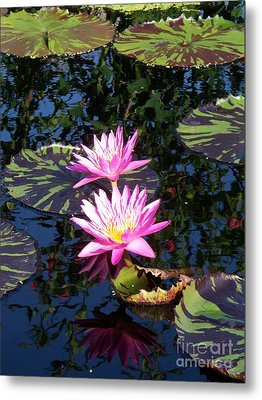 Lily Monet Metal Print by Eric  Schiabor