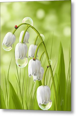 Lily Of The Valley Metal Print by Veronica Minozzi