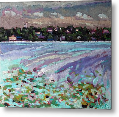 Lily Pads And Lilacs Metal Print by Phil Chadwick