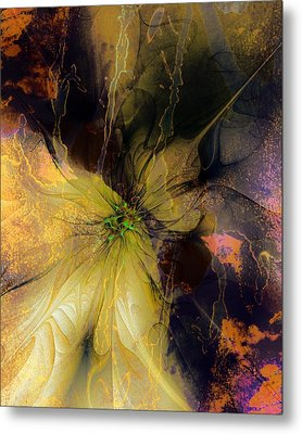 Lily Pond Reflections Metal Print by Amanda Moore