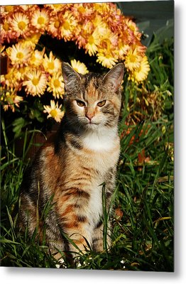 Lily With Harvest Mums Metal Print